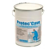 Resine impermeabilisante protec cave seau de 5kg 96439