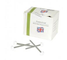 Clou acier inox NICOLL - embout plastique blanc - pour Belriv - 100 pièces - CI